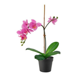 Picture of IKEA FEJKA Artificial Potted Plant, Orchid Lilac, 9 cm