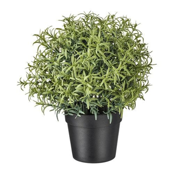 Picture of IKEA FEJKA Artificial Potted Plant, Rosemary, 9cm