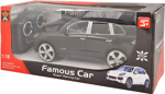 Picture of Famous Car Super Racing  Remote Control Car