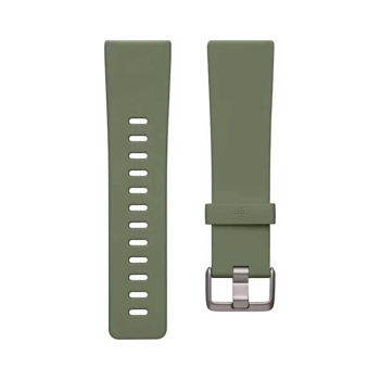 Fitbit  Versa 2  Classic   Band  in  Olive