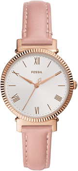 FOSSIL DAISY  THREE HAND WOMEN's WATCH    in   BLUSH LEATHER