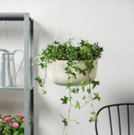 IKEA APPELROS Hanging Planter, in/outdoor Off-White 27 cm